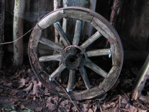koleso-tehno-gorod